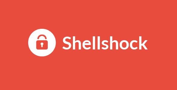 Vulnerabilitatea Shellshock Bash CVE-2014-6271