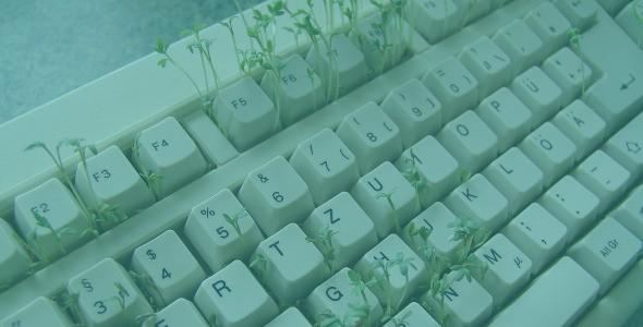 Scurtaturi sau functii pe tastatura de la F1 la F12